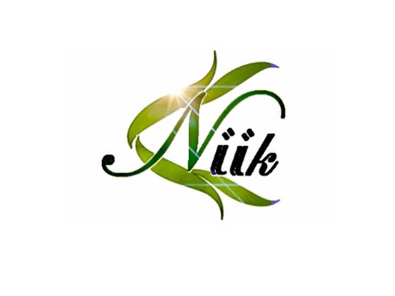 NIIK Products